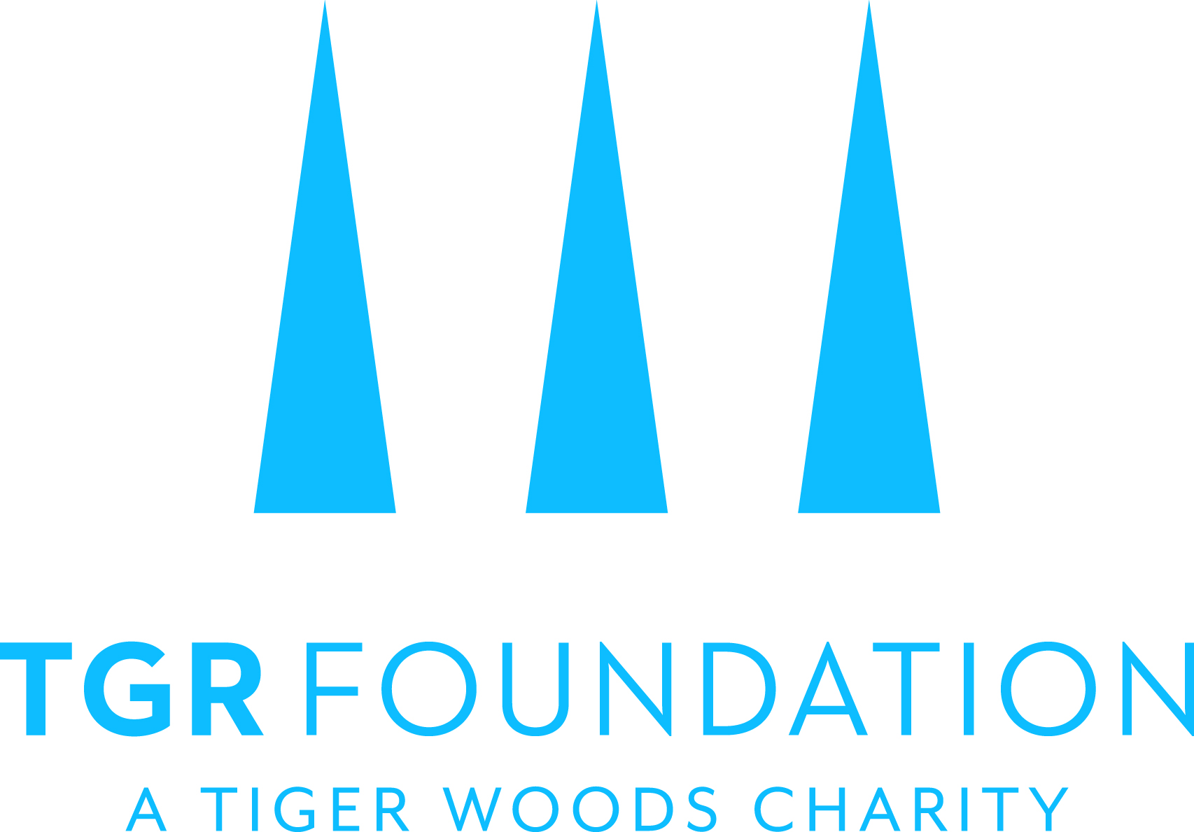TGR Foundation logo